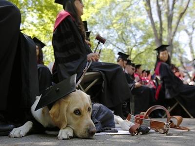Harvard nhận tiền hiến tặng lớn nhất trong lịch sử