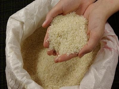 Thái Lan đấu giá 140.000 tấn gạo trong tuần này