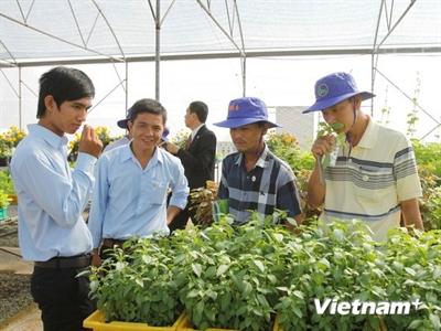 TPHCM khánh thành Trung tâm Giống rau hoa
