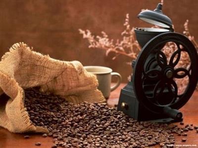 Giá cà phê arabica ngừng tăng bất chấp lo ngại về mùa vụ