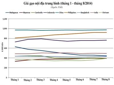 FAO: Giá gạo nội địa châu Á tháng 8 diễn biến trái chiều