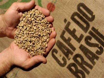 Brazil nâng ước tính sản lượng cà phê niên vụ 2014-2015 lên 45,14 triệu bao