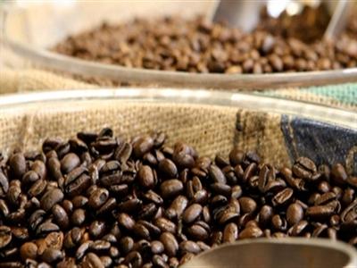 Giá cà phê Tây Nguyên giảm tiếp xuống 37,8-39,1 triệu đồng tấn