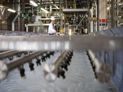 Sản xuất và dịch vụ Eurozone đồng loạt tăng trưởng chậm lại