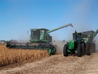 Giá đậu nành ghi nhận đợt giảm dài nhất từ 2010 trước viễn cảnh nguồn cung Mỹ