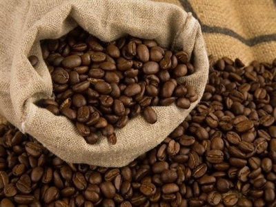 Giá cà phê Tây Nguyên tăng trở lại lên 37,9-39,1 triệu đồng tấn