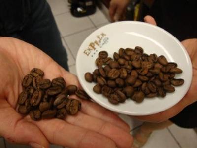 """Các nhà sản xuất cà phê """"lối cũ ta về"""""""