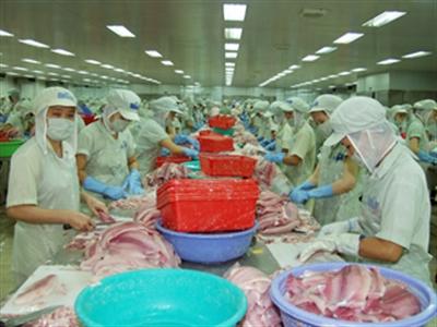 Hùng Vương mua xong 1,2 triệu cổ phiếu AGF