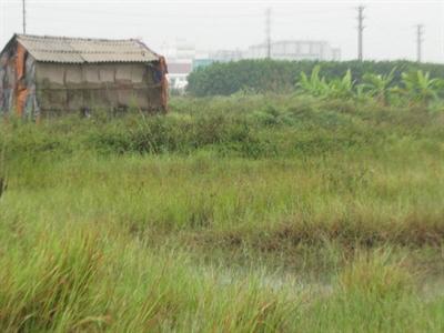 Tổng kiểm kê đất đai tại Hà Nội