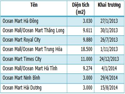 Ocean Retail tăng vốn 10 lần lên 3.000 tỷ đồng trong 3 năm?