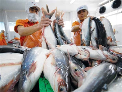 Chủ tịch Hùng Vương đăng ký mua 500 nghìn cổ phiếu HVG