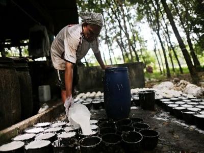 Ba nước sản xuất cao su hàng đầu họp bàn giải pháp hỗ trợ giá