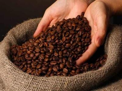Giá cà phê Tây Nguyên tăng mạnh hơn 1,1 triệu lên 40,9-42,2 triệu đồng/tấn