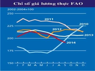 FAO: Giá lương thực giảm 6 tháng liên tiếp xuống thấp nhất 4 năm