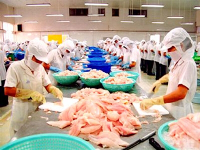 Nhờ cá tra, Việt Nam đứng đầu về xuất khẩu philê cá sang Brazil