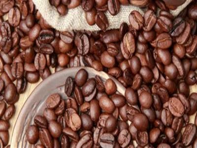 Giá cà phê Tây Nguyên tăng lên 41-42 triệu đồng tấn