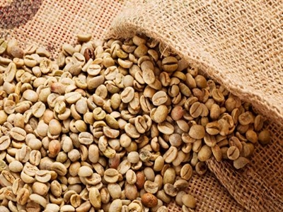 Giá cà phê Tây Nguyên rớt mạnh xuống 39-40,3 triệu đồng tấn