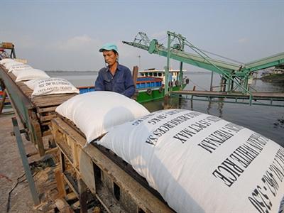 Xuất khẩu gạo cuối năm lại gặp khó