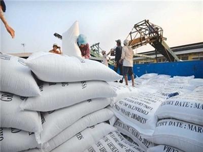 Việt Nam đang trợ cấp cho nước ngoài qua xuất gạo?
