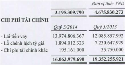 IDI: Giảm lỗ chênh lệch tỷ giá, lãi ròng gấp 6,7 lần cùng kỳ