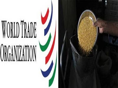 WTO: Hiệp định thuận lợi hóa thương mại còn nhiều bế tắc