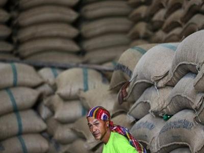 Kết quả kiểm tra gạo Thái Lan: 90% không đạt chuẩn