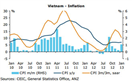 ANZ dự báo lạm phát Việt Nam năm 2013 ở 8-10%