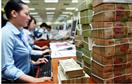 Yêu cầu lưu hồ sơ vay gói 30.000 tỷ đồng để thanh tra