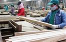 HSBC hạ dự báo tăng trưởng kinh tế VN còn 5,1%