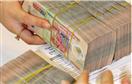 Công ty Quản lý tài sản mua nợ bằng trái phiếu đặc biệt