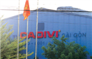 Thương vụ hời của Cadivi