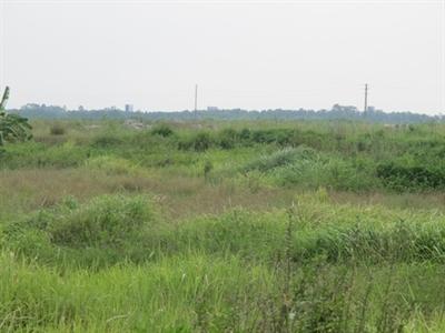 Dự án bất động sản khu vực Mê Linh mất giá