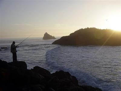 Phát hiện phóng xạ từ Nhật lan đến Thái Bình Dương