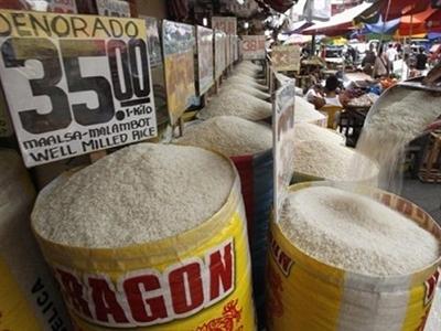 Tiêu thụ gạo của Philippines giảm 3% giai đoạn 2006-2013