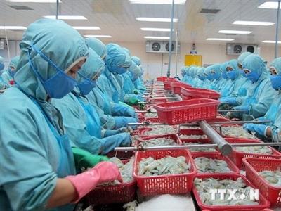 WTO đưa phán quyết với 7 nội dung có lợi cho tôm Việt Nam