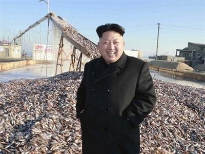 Chủ tịch Triều Tiên Kim Jong-un thị sát các nhà máy chế biến thực phẩm