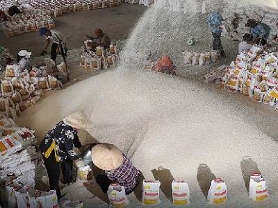 VFA hạ giá sàn xuất khẩu gạo 25% tấm xuống 380 USD/tấn