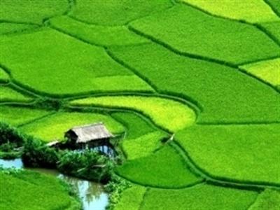 Hà Nội có thêm Khu du lịch, vui chơi giải trí và nghỉ dưỡng Thung Lũng Xanh