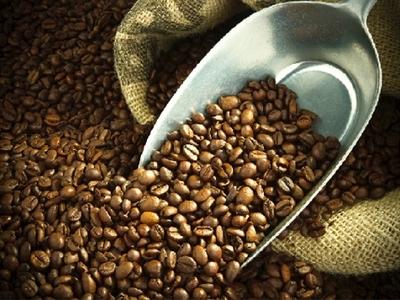 Giá cà phê Tây Nguyên lại giảm về 40,4-41,1 triệu đồng/tấn