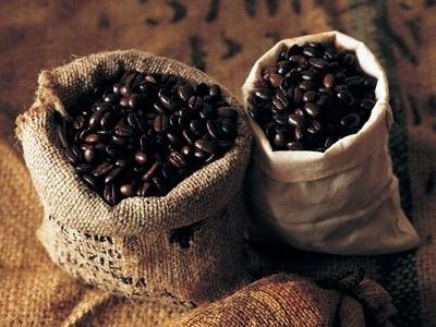 Giá cà phê Tây Nguyên giảm xuống 40,3-41 triệu đồng/tấn