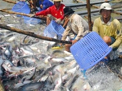 Hùng Vương đăng ký mua 2 triệu cổ phiếu VTF