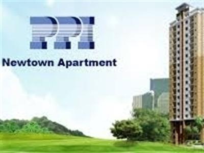 PPI dự kiến trả cổ tức và phát hành cổ phiếu thưởng 10%, chào bán cổ phiếu tỷ lệ 80%
