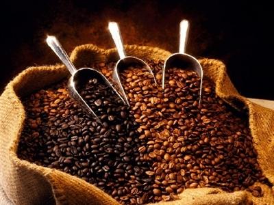 Giá cà phê Tây Nguyên giảm xuống 38,9-39,5 triệu đồng/tấn