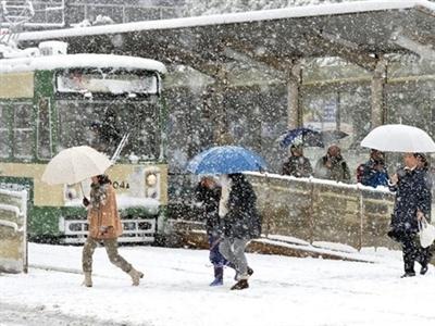 Miền bắc Nhật Bản chìm trong bão tuyết