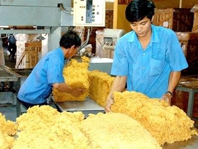 Kim ngạch xuất khẩu cao su 2014 giảm 27,7%, sản lượng tăng 1,38%