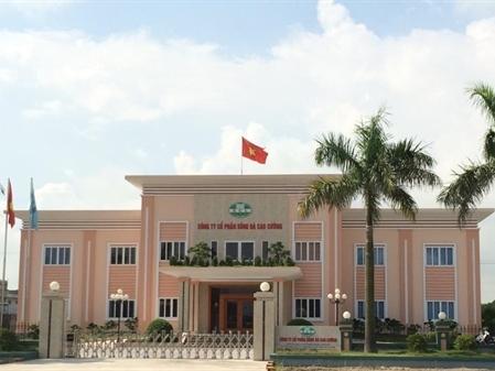 Sông Đà Cao Cường ngày 14/1 GDKHQ trả cổ tức 10% bằng tiền
