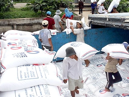 VFA hạ giá sàn xuất khẩu gạo 25% tấm xuống 360 USD/tấn