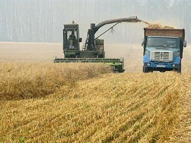 Nông nghiệp Nga gặp khó do chi phí đi vay tăng mạnh