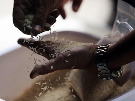 FAO: Giá gạo dự báo giảm do Thái Lan xả bán hàng lưu kho