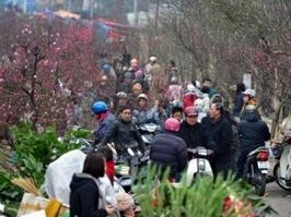 Hà Nội, TPHCM tổ chức 177 chợ hoa Xuân